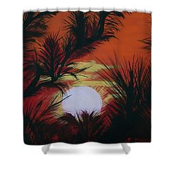 Pine Branch Silhouette Shower Curtain by Sharon Duguay