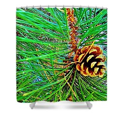 Shower Curtain featuring the photograph Pine Cone by Daniel Thompson
