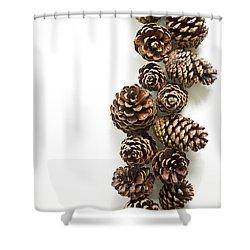 Pine Cones Shower Curtain by Edward Fielding