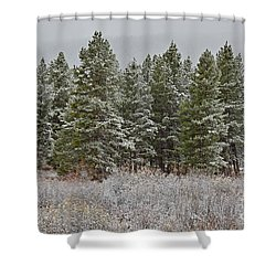 Pine Flurries Shower Curtain