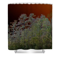 Pine Forest Shower Curtain by Connie Fox