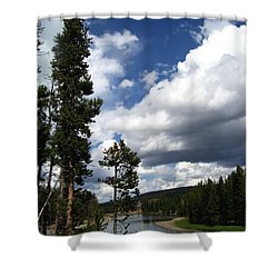 Shower Curtain featuring the photograph Pine On The Yellowstone River by Charles Robinson
