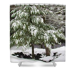 Pine Tree Covered With Snow 2 Shower Curtain by Lanjee Chee
