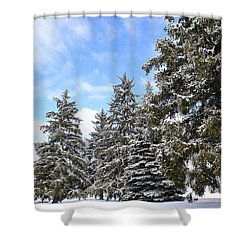 Pine Tree Haven Shower Curtain by Frozen in Time Fine Art Photography