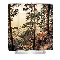 Pine Trees Of Holy Island Shower Curtain by Jenny Rainbow