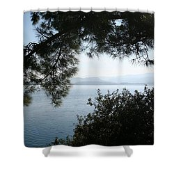 Shower Curtain featuring the photograph Pine Trees Overhanging The Aegean Sea by Tracey Harrington-Simpson