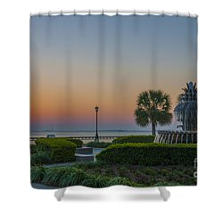 Dawns Light Shower Curtain by Dale Powell