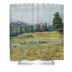 Pingree Park Shower Curtain by Mary Benke