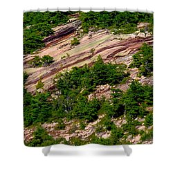 Pink Acadia 8103 Shower Curtain by Brent L Ander