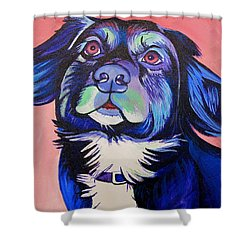 Pink And Blue Dog Shower Curtain by Joshua Morton
