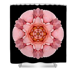 Shower Curtain featuring the photograph Pink And Orange Rose Iv Flower Mandala by David J Bookbinder