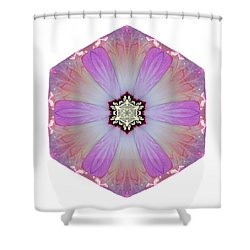 Pink And White Hibiscus Moscheutos I Flower Mandala White Shower Curtain