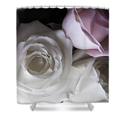Pink And White Roses Shower Curtain by Jennifer Ancker