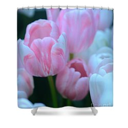 Pink And White Tulips Shower Curtain by Kathleen Struckle