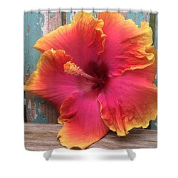 Tropical Pink And Yellow Hibiscus  Shower Curtain