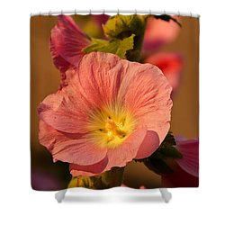 Shower Curtain featuring the photograph Pink And Yellow Hollyhock by Sue Smith