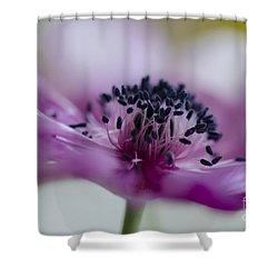 Pink Anemone  Shower Curtain by Nicole Markmann Nelson