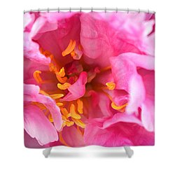 Pink Beauty Shower Curtain by Tine Nordbred