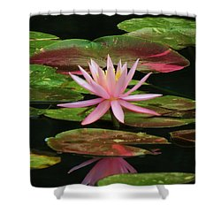 Pink Beauty Shower Curtain