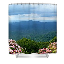 Pink Beds In The Summer Shower Curtain