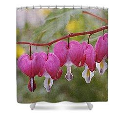 Pink Bleeding Hearts Shower Curtain