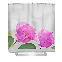 Pink Bougainvillea Flowers On White Silk Art Prints Shower Curtain