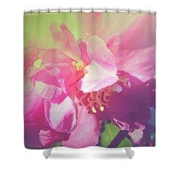 Pink Camellia Vintique Edit Shower Curtain by Anna Porter