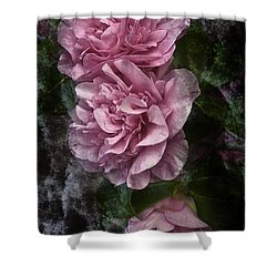 Pink Camellias Shower Curtain by Jane McIlroy