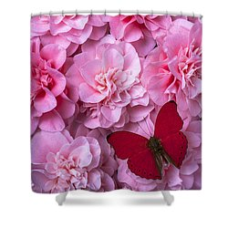 Pink Camilla's And Red Butterfly Shower Curtain by Garry Gay