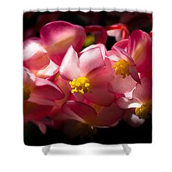 Pink Cascade Shower Curtain by David Patterson