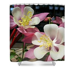 Shower Curtain featuring the photograph Pink Columbine by Caryl J Bohn