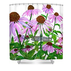 Pink Cone Flowers And Dragonfly Shower Curtain