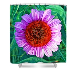 Pink Daisy By Jan Marvin Shower Curtain