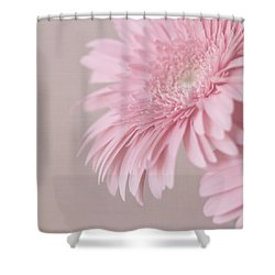 Pink Delight Shower Curtain by Kim Hojnacki