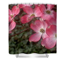 Pink Dogwood Delight Shower Curtain