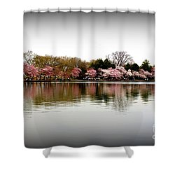 Pink Echoes Shower Curtain by Patti Whitten