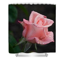 Pink Elegance Shower Curtain