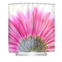 Pink Fan Shower Curtain by Andrea Kollo