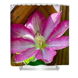 Pink Fantasy Shower Curtain