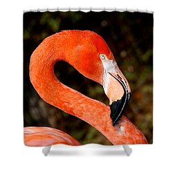 Not So Pink Flamingo Shower Curtain