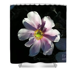Pink Flower Shower Curtain by Bev Conover