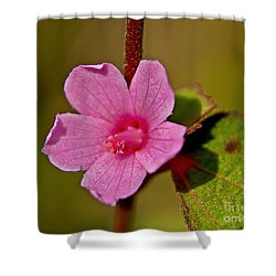 Shower Curtain featuring the photograph Pink Flower by Olga Hamilton