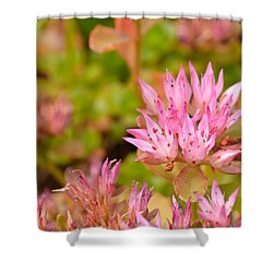 Pink Flower Shower Curtain by Tine Nordbred