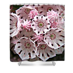 Pink Flowered Mountain Laurel Shower Curtain