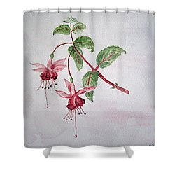 Pink Fuchsia's  Shower Curtain