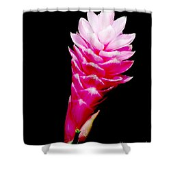 Pink Ginger Lilly Shower Curtain