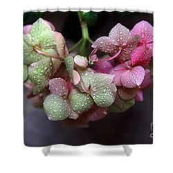Pink Green And Rain Shower Curtain