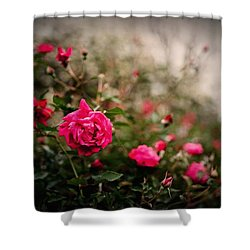 Pink Heaven Shower Curtain by Linda Unger