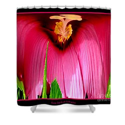 Pink Hibiscus Abstract Shower Curtain by Rose Santuci-Sofranko