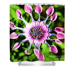 Pink Indian Painted Daisy Shower Curtain by Kathleen Struckle
